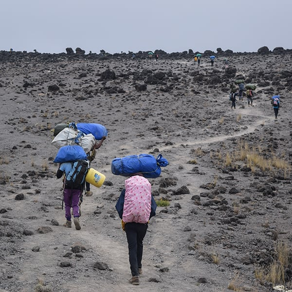 porters kilimanjaro