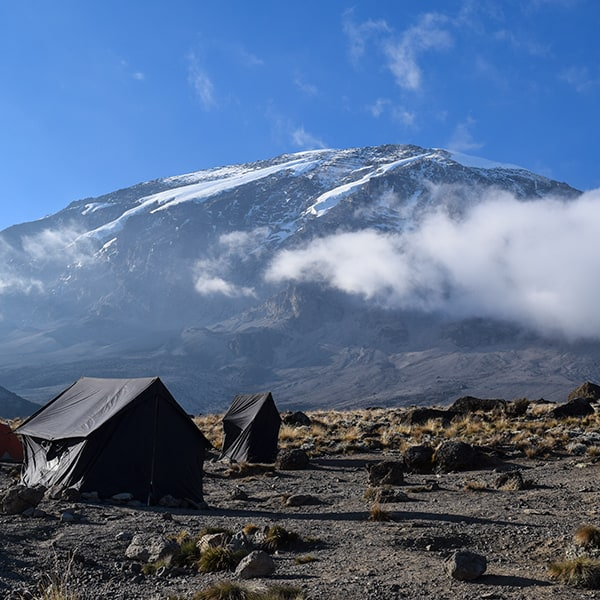 karanga camp view of kilimanjaro