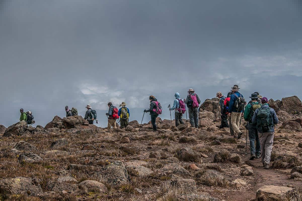 trekkers climb kilimanjaro